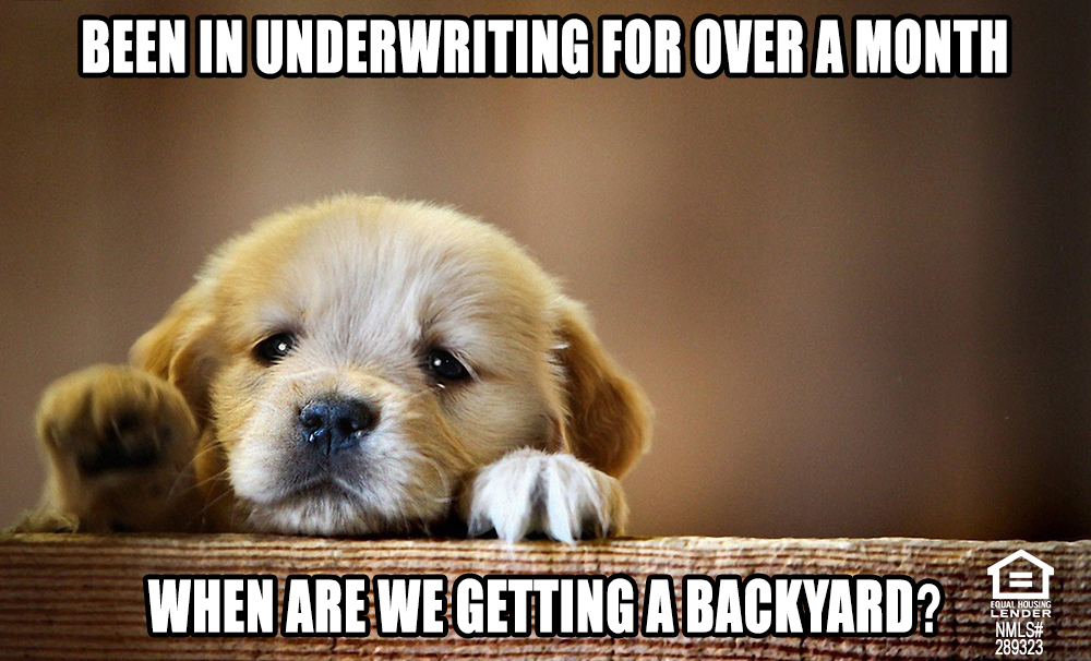 sad puppy meme - Florida Mortgage Firm